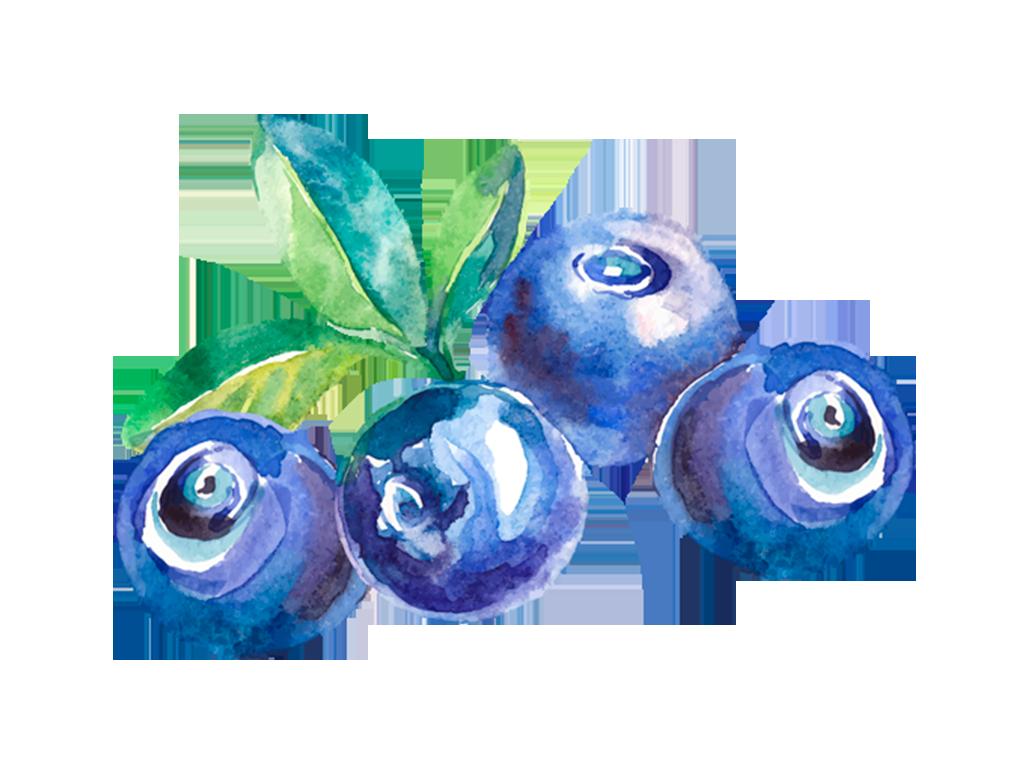 Arándanos · prod-fruta-arandanos.png