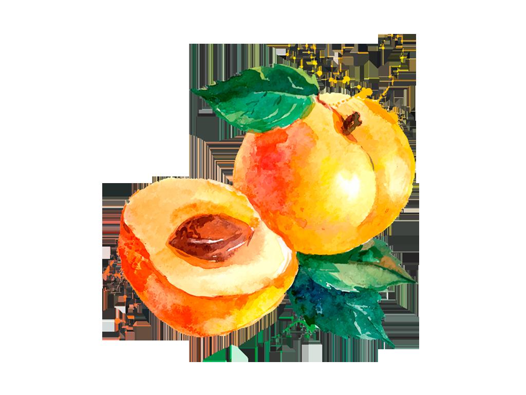 Damascos · prod-fruta-damascos.png