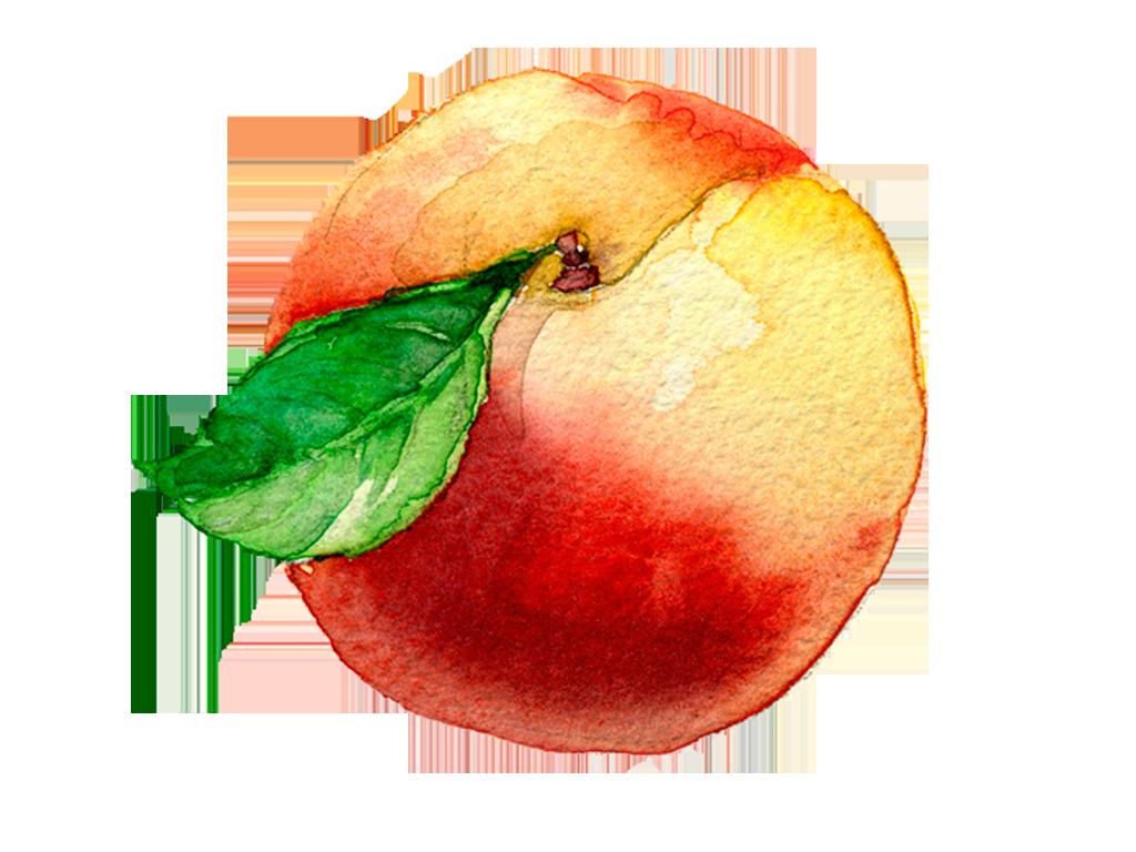 Duraznos · prod-fruta-duraznos.png